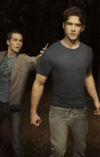 Teen Wolf by peggybieber