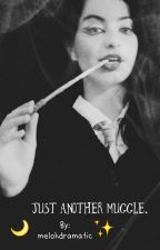 Just another muggle. by melohdramatic