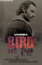 »Bird set free« 〈Rick Grimes y tu; temp2〉 by agwriterus