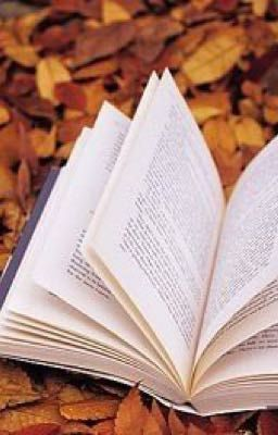 (Tổng hợp) Một vài thuật ngữ thông dụng trong tiểu thuyết