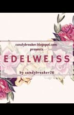 Edelweiss by nanaphan26