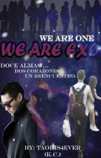 WE ARE ONE... WE ARE EXO (TAORIS) by KatherineCerna
