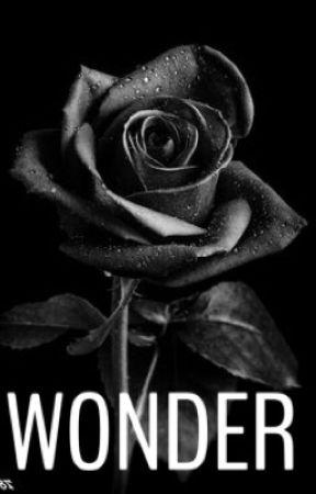 Wonder by fudalalalala145