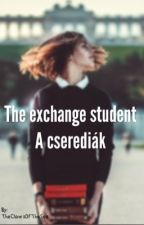 The exchange student  by TheClawsOfTheSea