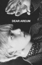 DEAR AREUM by HYUNSLICK
