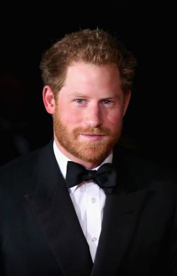 The Royalty (Prince Harry Fanfic #4)