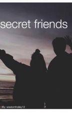 Secret friends  by wisdomholley12