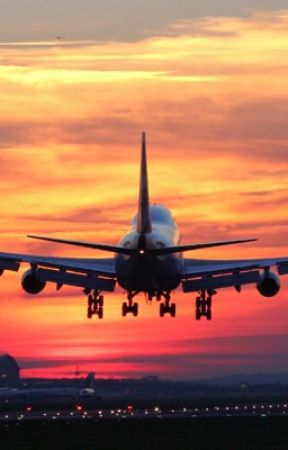 the world trip plane trip wattpad
