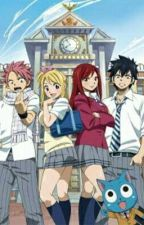 fairy high school by Kiritoru