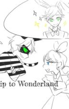 A Trip To Wonderland by TheLadyInRedAndBlack