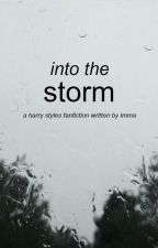 into the storm [h.s.] by stylesalmighty