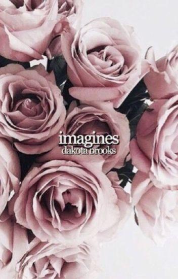 imagines → dakota brooks
