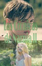 Las Crónicas de Narnia II El Príncipe Caspian(Peter Pevensie) by MaarStyles_