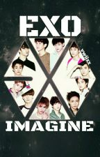 EXO ♡ IMAGINE by vwiixx