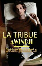 LA TRIBUE AWINDJI » ls / BxB by lethargiclarrie