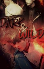 Dark & Wild {VMIN} by BTSKATARMY