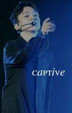 captive | kaisoo by seluicidal