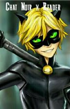New Miraculous In Town (Chat Noir x Reader) by KathTheFallenAngel
