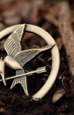 The hunger games by h00vero2