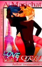 a marichat love story by twaimz101923