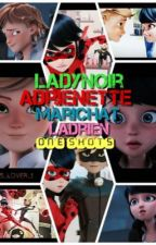 Miraculous Ladybug oneshots! by R5_lover_1