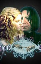 Sevmine-Hass Oder Liebe by efeu2001