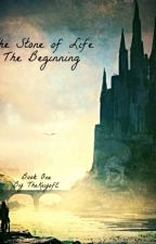 The Stone of Life:  Book One:  The Beginning  (EDITING!!!) by TheKeyofE