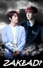 Zakład? | Chanbaek by waterwoof