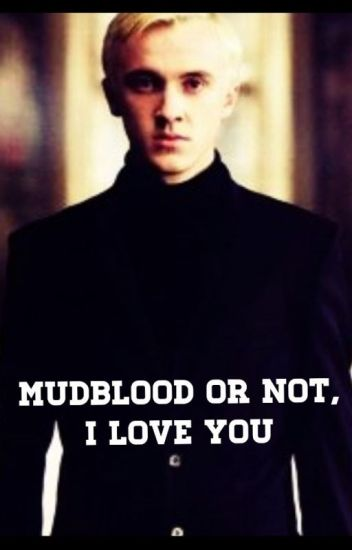 Mudblood or not, I love you (Draco x reader)