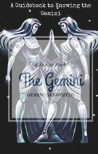 Book of the Gemini by Owlogic-Writings