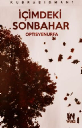 İÇİMDEKİ SONBAHAR by novamberfarmer
