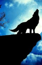 The Alpha Wolves: An AJ FanFic by Sj_314