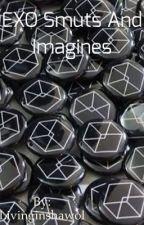 EXO smuts and imagines 7u7... by livinginshawol