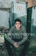 Stewart Maloley Imagines/Prefences by xDigitalGoddessx