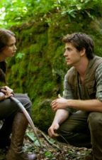What would happen if Gale Hawthorne volunteered in the Hunger Games? by stanleys2pack