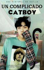 Un Complicado Catboy ↪SeHo↩ by NAFLIN