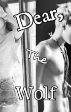 Dear, The Wolf ( HunHan ) EXO by mrohseh