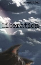 Liberation (mxm) by ravewriter