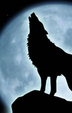 Silver Wolfblood by CarterKane2002