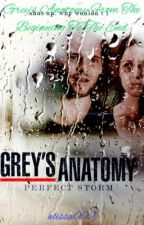 Grey's Anatomy from the beginning to the end by alissa002