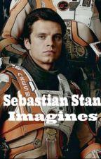 Sebastian Stan Imagines|wattys 2017 by MrsEvanStan