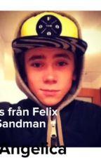 Sms från Felix Sandman by AngelicaBjrkman