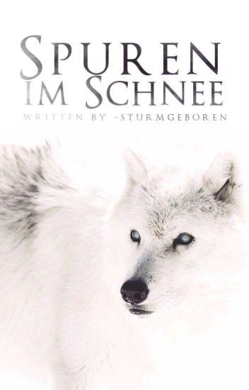 Spuren im Schnee [1] ▸ Robb Stark/Jon Schnee ✔