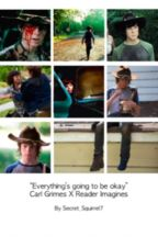 Everything's Going To Be Okay (Carl Grimes X Reader Imagines) by walkingcarlsupporter