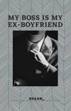 My Boss Is My Ex-boyfriend by nclnn_