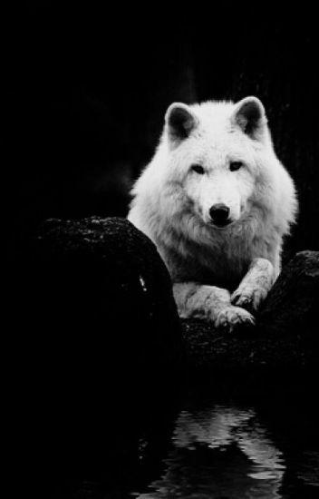 Пленница волка
