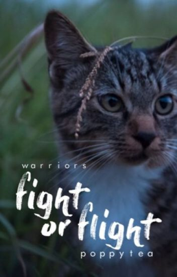 Fight Or Flight Warrior Cats Fanfic