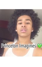 Princeton Imagines by Prince-Msfit