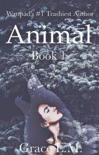 Animal  by avifauna