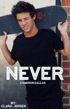 Never  • C.D by clara_h_j